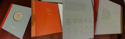 Book Review- The Bump Pregnancy Planner